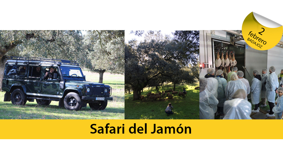safari del jamón - web traventure